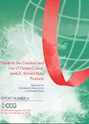 IOCCG Report 4 (2004)